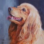 Heidi, 14 x 11 Oil on Linen