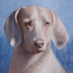 """""""Ruby,"""" 16 x 12 Oil on Panel"""